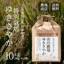 【農家直送】市川農場が世に出した新しい北海道米「ゆきさやか」10kg【送料無料】/米/お米/北海道米