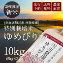 【新米予約】市川農場直送「29年度産ゆめぴりか」10kg(5kg×2)【送料無料】米/お米/北海道米