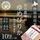 30年度産【農家直送】市川農場の「ゆめぴりか」10kg【北海...