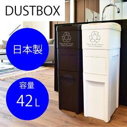 フタ付き ダストボックス 42L azu183838 <ダストBOX ごみ箱 使い分け ふた付き 分別 スリム リビング ダイニング 縦型>