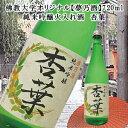 純米吟醸火入れ酒「夢乃酒 杏葉」720ml