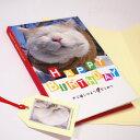 かご猫シロ メッセージブック HAPPY BIRTHDAY(誕生祝い)封筒付き(バースデーブック 猫雑貨 ネコグッズ ねこ キャット)EC