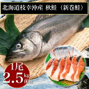 北海道 枝幸沖産 秋鮭(新巻鮭)1尾2.5kg前後 甘塩 数量限定 秋鮭 新物 寒風干し シャケ しゃけ 鮭