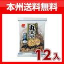 (本州送料無料!)三幸製菓 丸大豆せんべい旨塩味 12入