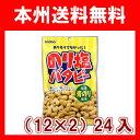 (本州送料無料)稲葉ピーナツ 125g のり塩バタピー(12×2)24入