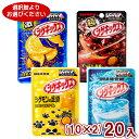 (2つ選んでメール便全国送料無料)味覚糖 シゲキックス(10×2)20入 (ポイント消化