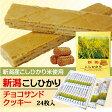 コシヒカリチョコサンドクッキー 24個【通販】【お菓子】【お土産】