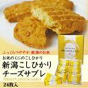 新潟こしひかりチーズサブレ24枚【通販】【お菓子】【お土産】
