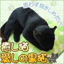 癒しのねこ 愛しの黒猫[代引き手数料無料]