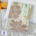 掛布団カバー 日本製 ベージュ 寝装品 インテリア 綿100%