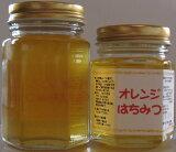 【】【世界の蜂蜜】オレンジ(スペイン)200gメール便【smtb-KD】P06Dec14