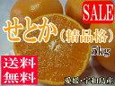 水果 - 【送料無料】せとか(精品格)5kg【smtb-kd】