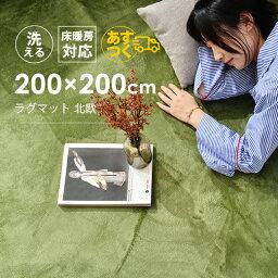 ラグマット 洗える 200×200cm 6色 軽量 北欧 シャギーラグ <strong>ホットカーペット</strong>対応 無地 高級感 絨毯リビング 床暖房対応 オールシーズン 寝室 タブレット マイクロファイバーラグ