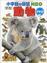 小学館の図鑑NEO 動物(DVD付き)