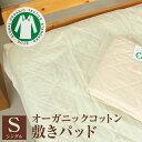 綿100% オーガニックコットン 敷きパッド シングル 100x205cm 吸水性・保水性抜群 脱脂綿 2重ガーゼ