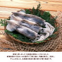 【サンクスフェア】\破格20%OFF!1,150円!/<...