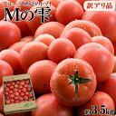 \送料無料!/<訳あり Mの雫(トマト) 約3.5kg> 宮崎県木城町の自然で育まれた、フルーティでしっかりとした甘みのある高糖度トマト..