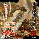クーポン利用で\192円OFF!送料無料888円!/<ししゃ...