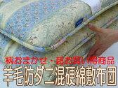 フランス産羊毛&防ダニ混吸汗性硬綿敷布団シングルロングサイズ