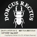 送料無料【コクワガタ Ver.037 カッティングステッカー 2枚組 幅約17cm×高約15.5cm】DORCUS RECTUS ハンドメイド
