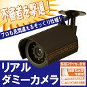 リアルダミーカメラ AT-3000D [防犯カメラ 監視カメラ ダミー フェイク 偽 偽者 カメラ]