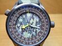 TERRA CIELO MARE テッラ・チエロ・マーレ 腕時計 ORIENTEERING オリエンテーリング ツンドラ サンディレクション レザー ブラウンカモ…