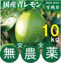 ショッピング10kg 国産無農薬青レモン10kg★有機JAS規定を守って栽培★奈良産★10kgは約70個〜80個です。【注】多少黄色くなっています。