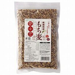 もち麦(国産)300g ★国内産100%(愛媛県...の商品画像