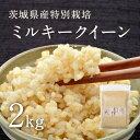 【28年産】茨城県産 特別栽培玄米「しらさぎミルキークイーン」(2kg)