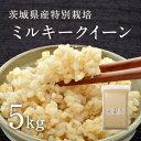 【28年産】茨城県産 特別栽培玄米「しらさぎミルキークイーン」(5kg)