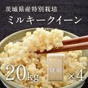 【29年産新米】茨城県産 特別栽培玄米「しらさぎミルキークイーン」(20kg)