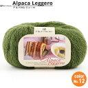 秋冬毛糸 『Alpaca Leggero(アルパカレジェーロ) 12番色』 Richi More リッチモア