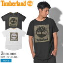 【メール便可】 TIMBERLAND ティンバーランド 半袖Tシャツ 全2色カモ リニアツリー 半袖Tシャツ CAMO LINEAR TREE S/S TEEA1MBM 1 100 メンズ