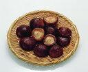 冷凍椎茸500g(約40-50個入) 「炒め物 煮物 各種料理材料 冷凍食品 業務用」【RCP】