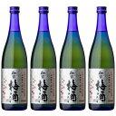 中元 ギフト 財宝 梅酒 12度 720ml×4本 送料無料