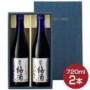 【あす楽】 財宝 梅酒 12度 720ml×2本 送料無料[お酒 セット ギフト]