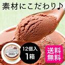 【送料無料】 財宝 チョコレート アイス 90ml×12個 ...