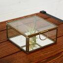 ガラスと真鍮でできた鏡付き収納ケース(Sサイズ)(63120) 【ガラスボックス ガラスケース テラリウム 容器 四角 ディスプレイケース 小物入れ 小物収納 ...