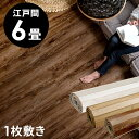 【 1梱包タイプ品 】GA-60シリーズ 江戸間6畳用 ヴィ...