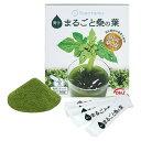 【送料無料】トヨタマ DNJ まるごと桑の葉青汁 60g(2g×30包) 01096214