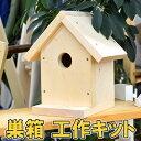 巣箱 鳥の巣 工作キット 小学生 高学年 低学年 男の子 女の子 工作 木 木材 夏休み 宿題 夏休みの宿題 自由工作 キット バードハウス 鳥小屋 小屋