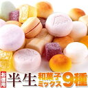 訳ありスイーツ 和菓子!お徳用 半生和菓子ミックス9種880g(440g×2袋)