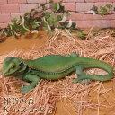トカゲの置物 トカゲ Aタイプ グリーン リアルなイグアナ とかげ 爬虫類 ドラゴン 動物オブジェ ガーデンオーナメント 装飾 フィギュア モチーフ インテリア 玄関先 庭 雑貨