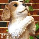 犬 置物 キャバリア 子いぬ イヌ ドッグ リアルな犬の置物 お願いドッグ 動物オブジェ ガーデンオーナメント 装飾 フィギュア モチーフ インテリア 玄関先 庭 雑貨