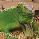 トカゲの置物 イグアナ ビッグサイズ 爬虫類 大きくてリアルなトカゲの置物 動物オブジェ ガーデンオーナメント 装飾 フィギュア モチーフ インテリア 玄関先 庭 雑貨