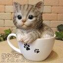 猫 置物 リアル ねこ ネコ キャット リアルな猫の置物 ティーカップキャット グレー 動物オブジェ ガーデンオーナメント 装飾 フィギュア モチーフ インテリア 玄関先 庭 雑貨
