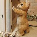 猫 置物 リアル ねこ ネコ キャット リアルな猫の置物 お願いキャット2 チャトラ 動物オブジェ ガーデンオーナメント 装飾 フィギュア モチーフ インテリア 玄関先 庭 雑貨