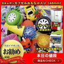 ガチャカプセル おもちゃ入り100個セット 48mmカプセル 子ども会 子供会 景品 玩具 おもちゃ