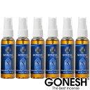 GONESH ガーネッシュ ガネッシュルームスプレー型 芳香剤 エアフレッシュナーNo.8 -スプリングミスト- 激安6本セット