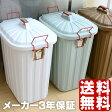ゴミ箱 PALE X PAIL 60L 日本製 3年保証 キッチン おしゃれ 北欧 人気 分別 大容量 ふた付き フタ付き 屋外